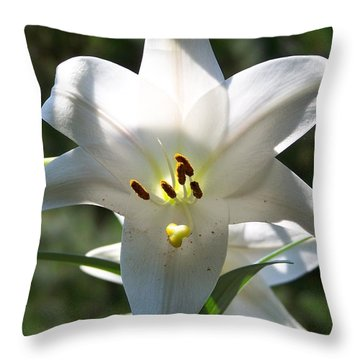 Throw Pillow featuring the photograph Summer Beauty by Jake Hartz