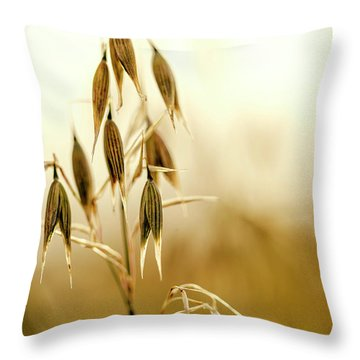 Summer Oat Throw Pillow