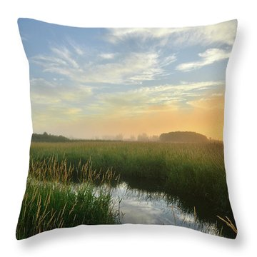 Throw Pillow featuring the photograph Sunrise At Glacial Park by Ray Mathis