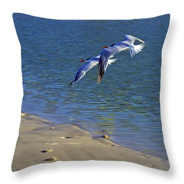 2 Terns In Flight Throw Pillow