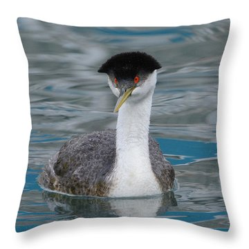 Throw Pillow featuring the photograph The Look by Fraida Gutovich