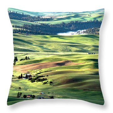 Throw Pillow featuring the photograph The Palouse by Joe Paul