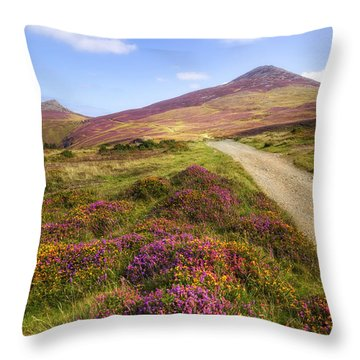 The Rivals - Wales Throw Pillow