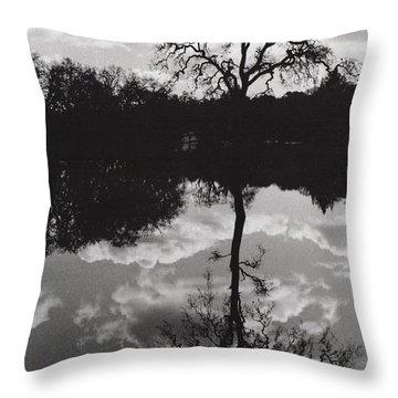 Tree Reflection Sebastopol Ca, Throw Pillow
