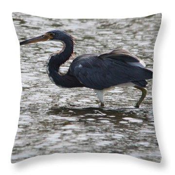Tricolored Heron Throw Pillow