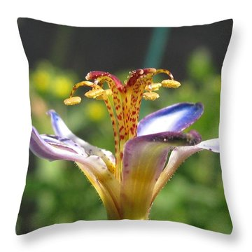 Tricyrtis Named Taipei Silk Throw Pillow