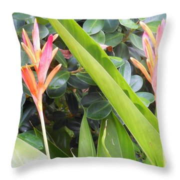Throw Pillow featuring the photograph Tropical Flowers by Kay Gilley