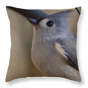 Throw Pillow featuring the photograph Tufted Titmouse by Robert L Jackson