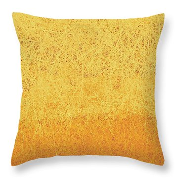 Utah Winter Sun Throw Pillow
