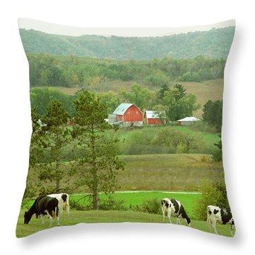 Valley Girls Throw Pillow