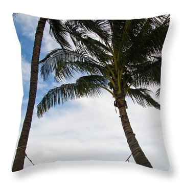 Waiting For You Throw Pillow by Roger Mullenhour