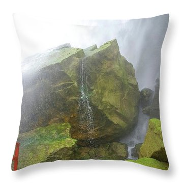 Throw Pillow featuring the photograph Water Path by Raymond Earley