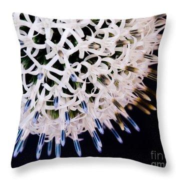 White Alium Onion Flower Throw Pillow