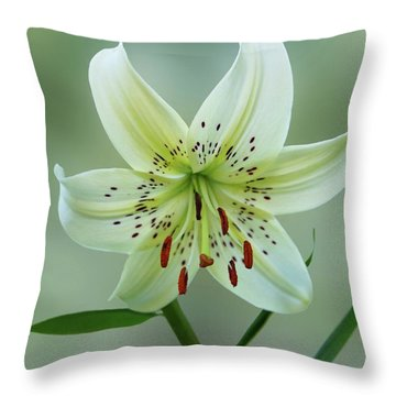 Golden Rayed Lily Throw Pillow by Sandy Keeton