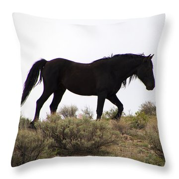 Wild Black Mustang Stallion Throw Pillow
