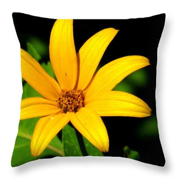 Throw Pillow featuring the photograph Wild Flower by Eric Switzer