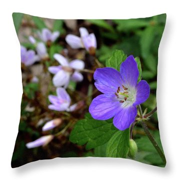 Wild Geranium Throw Pillow by Tim Good