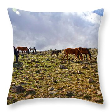 Wild Mustang Herd Throw Pillow