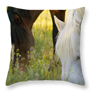 Wild Mustang Horses Throw Pillow
