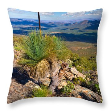 Wilpena Pound  Throw Pillow by Bill  Robinson