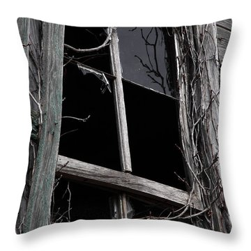 Window Throw Pillow by Amanda Barcon