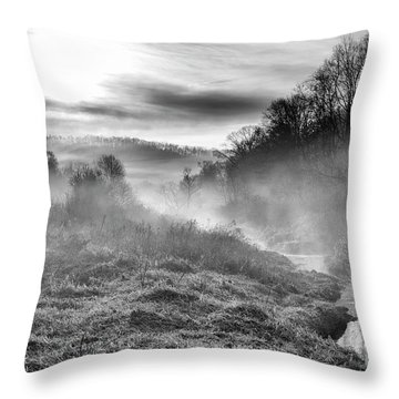 Throw Pillow featuring the photograph Winter Mist by Thomas R Fletcher