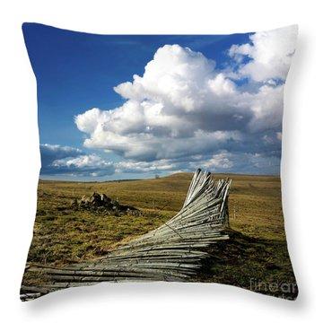 Wooden Posts Throw Pillow