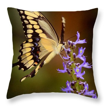 Yellow Swallowtail Throw Pillow by Joseph G Holland