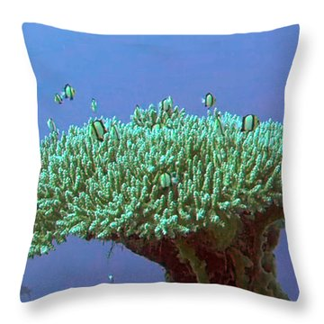 Zanzibar Island Sea  Coral Reef Vegitation Bio Diversity Of Exotic Fish Plants And  Organisims Zanzi Throw Pillow by Navin Joshi