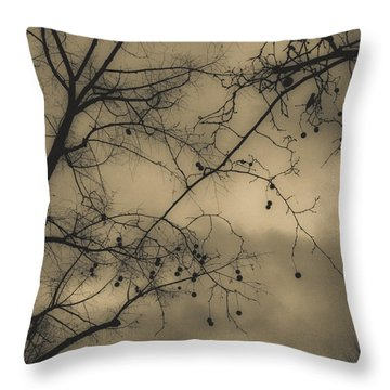 Fine Art Throw Pillow by Gianfranco Evangelista