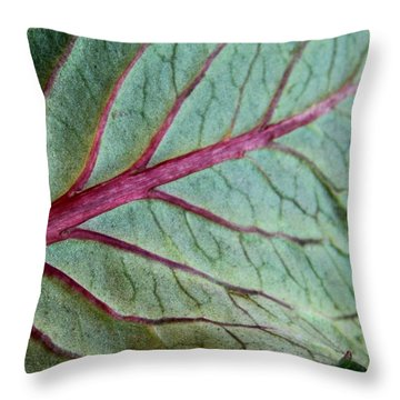 2010 Hydrangea Leaf Close Up 5 Throw Pillow by Robert Morin