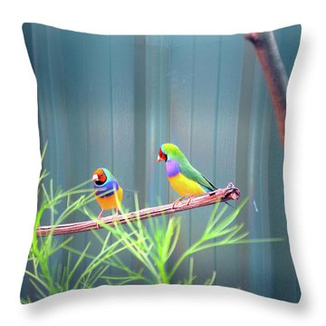 Aussie Rainbow Lovebirds Throw Pillow