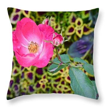 2015 Fall Equinox At The Garden Hello Fall Throw Pillow