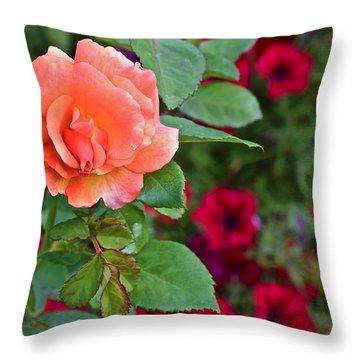 2015 Fall Equinox At The Garden Sunset Rose And Petunias Throw Pillow