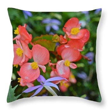 2015 Mid September At The Garden Begonias 2 Throw Pillow