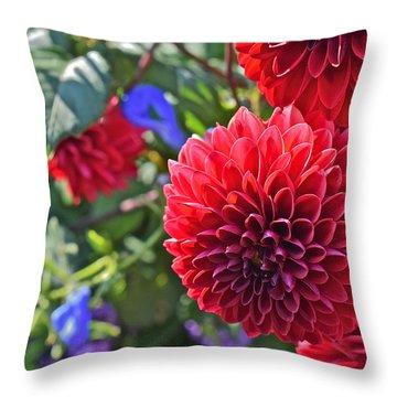 2015 Mid September At The Garden Dahlias 2 Throw Pillow