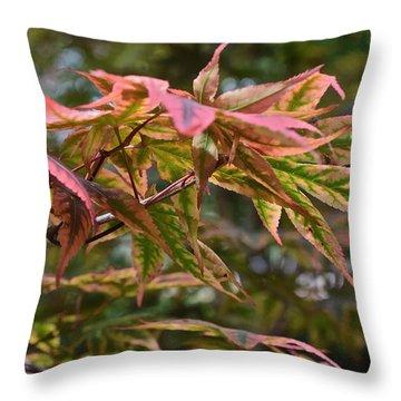 2015 Mid-september At The Garden Japanese Maple 1 Throw Pillow