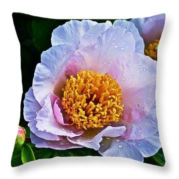 2015 Spring At The Garden White Peony  Throw Pillow