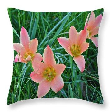 2015 Spring At The Gardens Meadow Garden Tulips 3 Throw Pillow