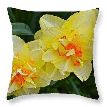 2015 Spring At The Gardens Tango Daffodil Throw Pillow