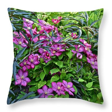 2015 Summer At The Garden Beautiful Clematis Throw Pillow