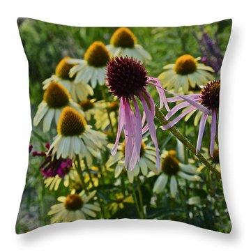 2015 Summer At The Garden Coneflowers Throw Pillow