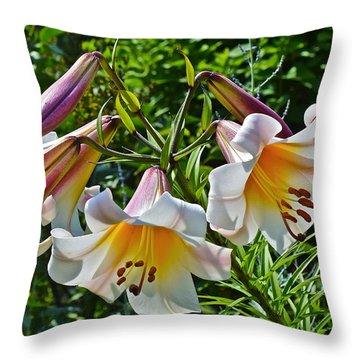 2015 Summer At The Garden Lilies In The Rose Garden 1 Throw Pillow