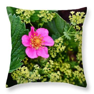 2015 Summer's Eve At The Garden Lipstick Strawberry Throw Pillow