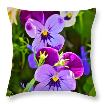 2015 Summer's Eve At The Garden Pansy Totem Throw Pillow