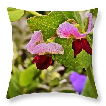 2015 Summer's Eve At The Garden Sweet Pea 2 Throw Pillow
