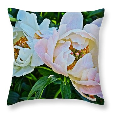 2015 Summer's Eve At The Garden White Peony Duo Throw Pillow