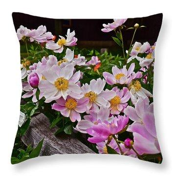 2015 Summer's Eve Neighborhood Garden Front Yard Peonies 4 Throw Pillow