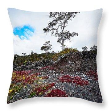 20150516144211fla24528-master Throw Pillow by Fernando Lopez Arbarello
