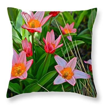 2016 Acewood Tulips 2 Throw Pillow